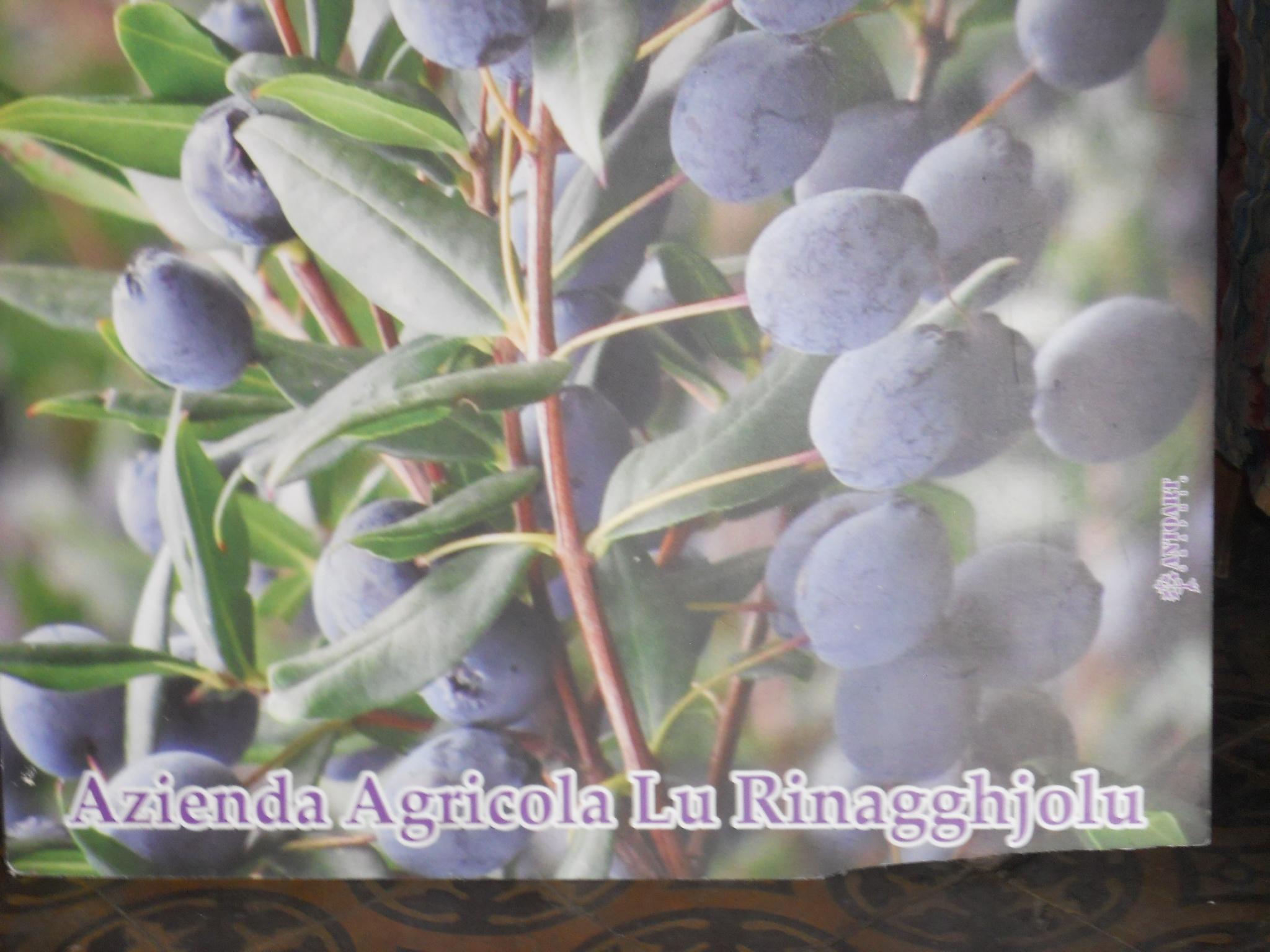 La scia profumata dei saponi ai petali di rosa di Paoletta giunge fino a Luras.